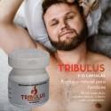 Potenciador Tribulus